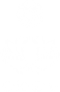 C60 Evo logo white