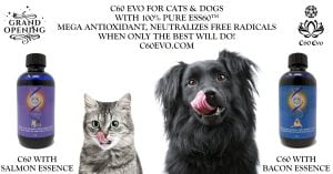 C60 Evo for Cats and Dogs